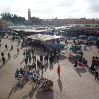 Mad Marrakesh