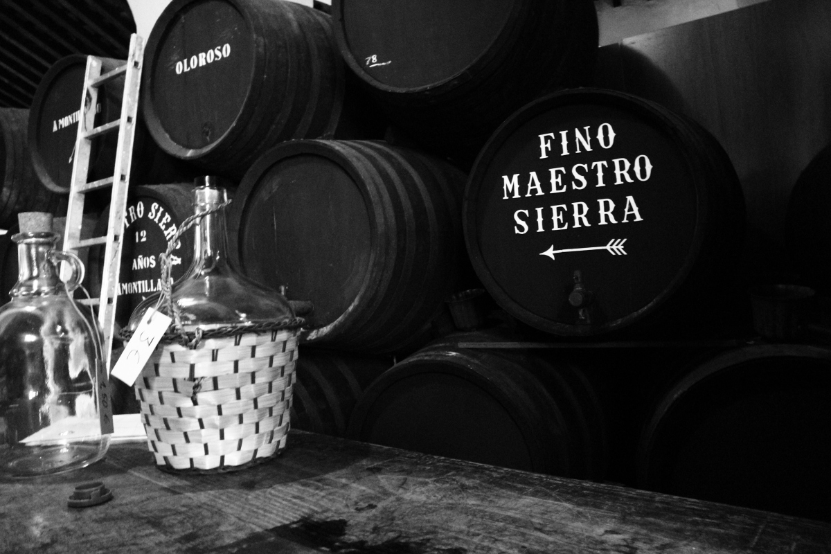 Toasting to Tradition at Bodegas Maestro Sierra - ¡Salud!
