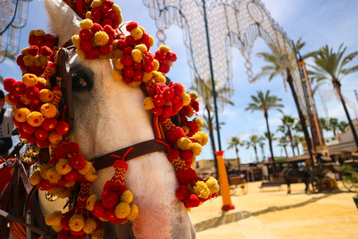 Horsing About at the Feria del Caballo, Jerez de la Frontera (Photo Feature)
