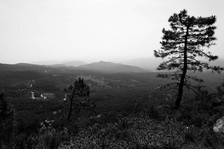 Sierra de Cadiz-3