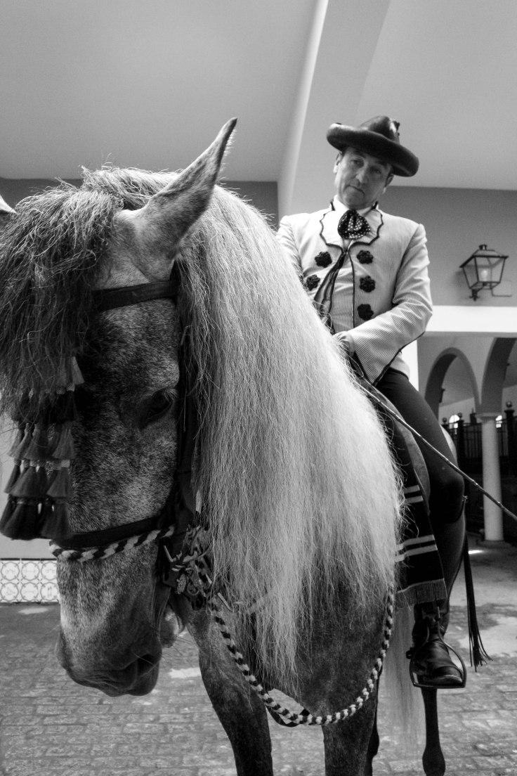 Real Escuela Arte Equestre-12
