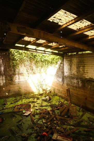 Inside the old whaling factory